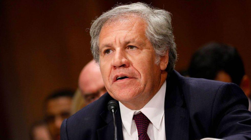 Secretario general de la OEA se equivocó con tuit sobre CICIG: Zovatto - Luis Almagro. Foto de Libertad Digital