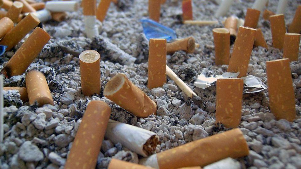 Colillas de cigarro podrían usarse para producir materia prima - Foto de Archivo