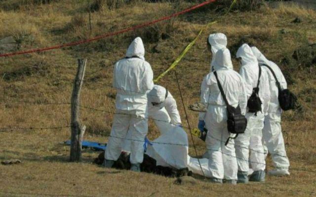 Hallan dos fosas con restos de 8 personas en Michoacán - Foto de @cuartopodermich
