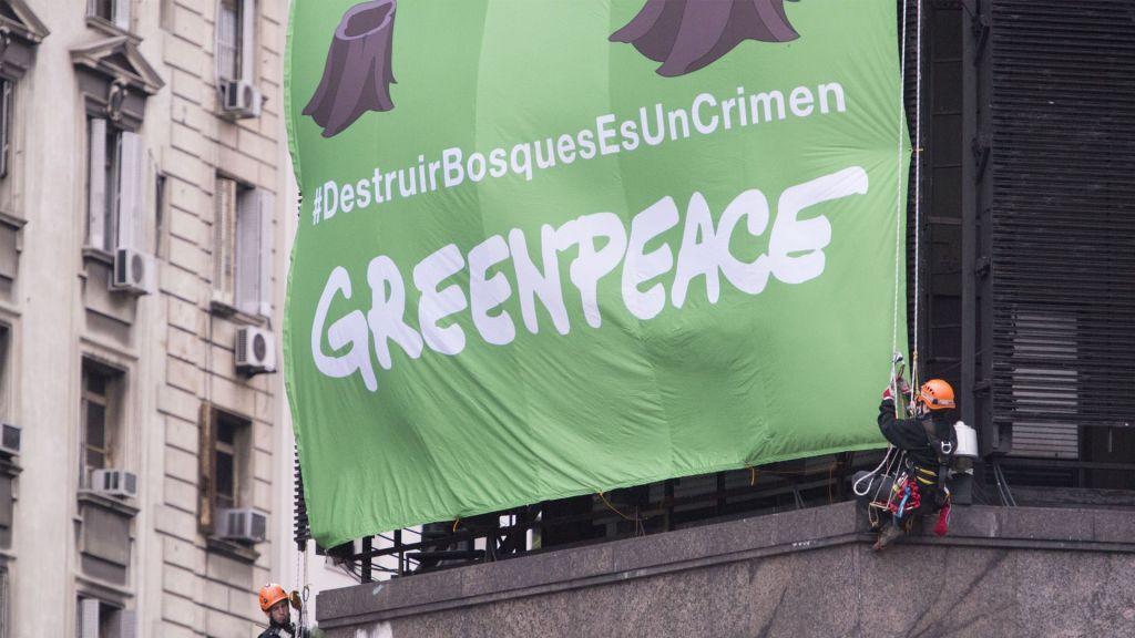 Denuncian acoso sexual en Greenpeace de Argentina, Chile y Colombia - Foto de internet
