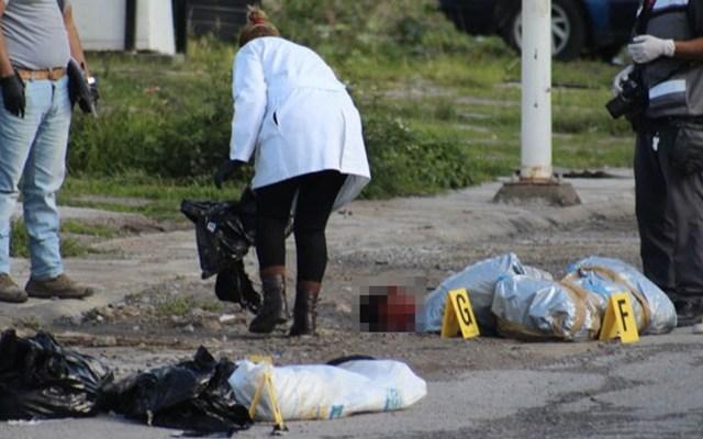 Encuentran restos humanos en bolsas de plástico en Guerrero - Foto de Quadratín
