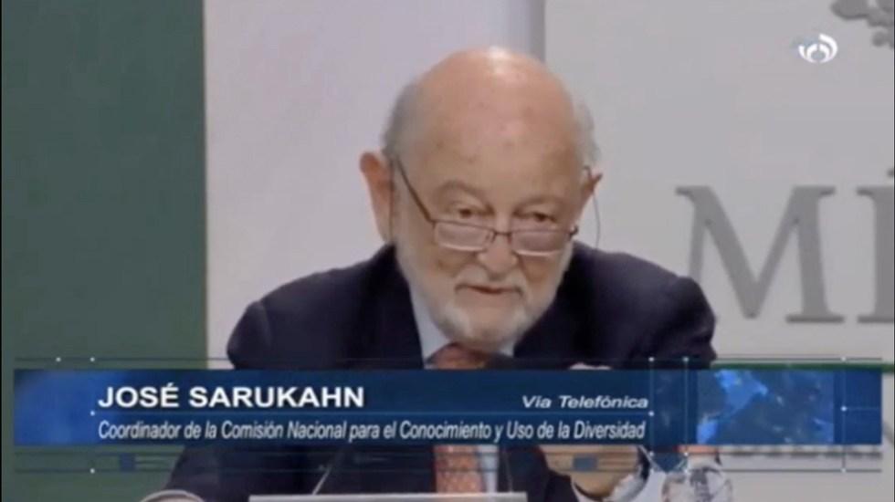 Urgente restaurar y manejar la biodiversidad de manera sustentable: José Sarukahn