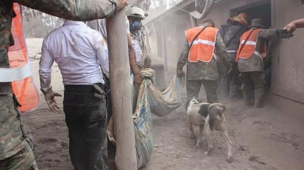Perro guía a soldados a su familia sepultada por Volcán de Fuego - Foto de MemesGT2