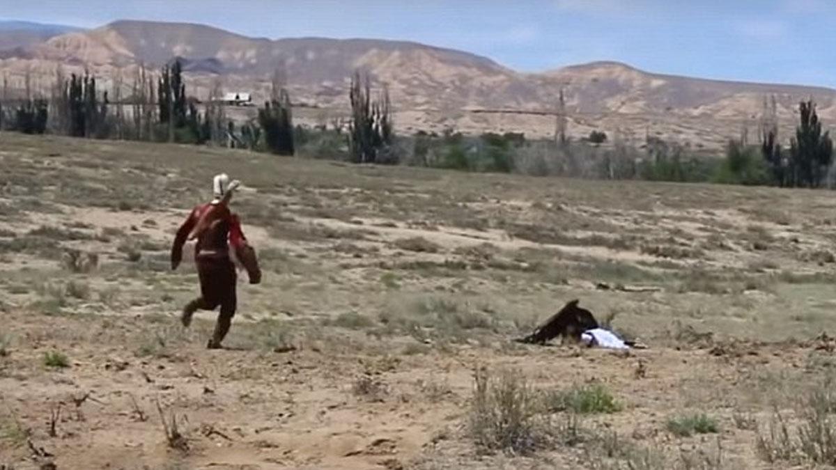 Águila ataca a una niña de 8 años