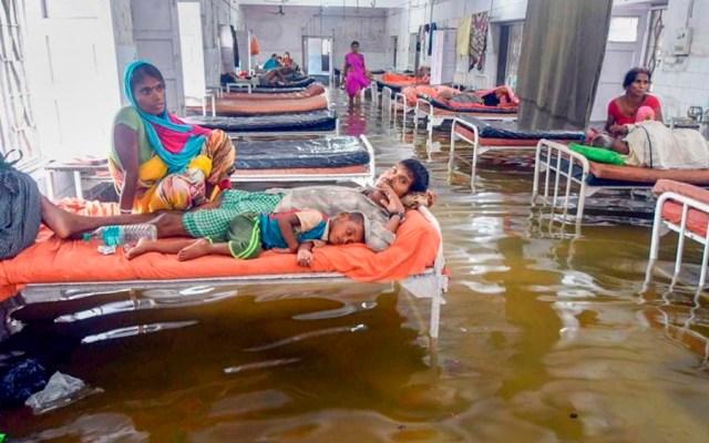 #Video Hallan peces en hospital tras inundaciones en India - Foto de Twitter