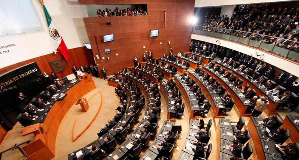 PAN, PRD y MC presentan iniciativas en el Senado por separado - Senado apoyaría despenalización de amapola