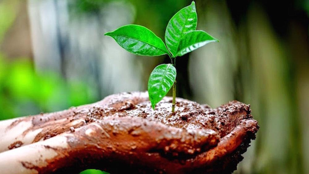 Advierten por extinción humana ante pérdida de biodiversidad