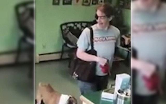 #Video Mujer abandona a bulldog en peluquería para mascotas - Captura de Pantalla
