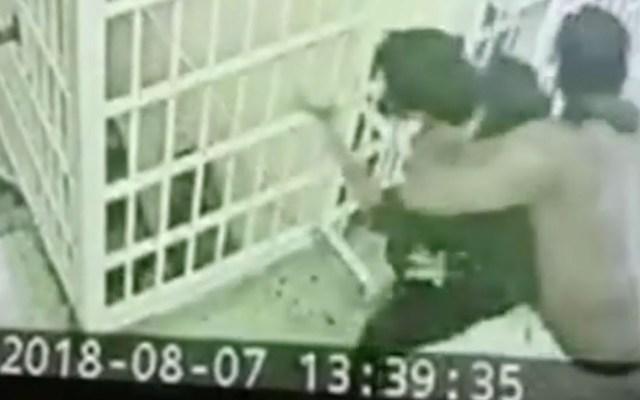 #Video Reo ataca a oficial de correccional en Nueva York