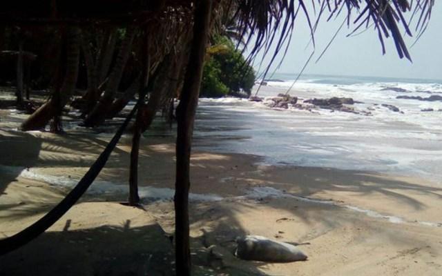 Cierran puertos en Oaxaca y Chiapas debido a onda tropical 27