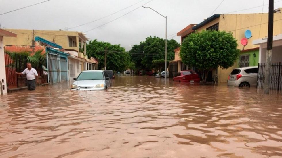 Lo que necesita el centro de acopio para Sinaloa en la CDMX - Foto de Notimex