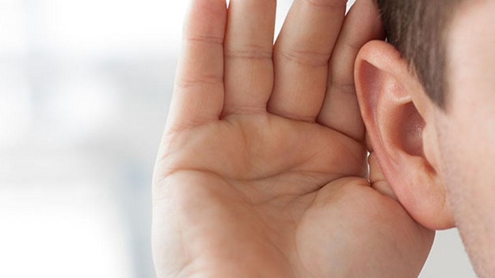 Descubren nuevos tipos de neuronas en el oído - Foto de internet