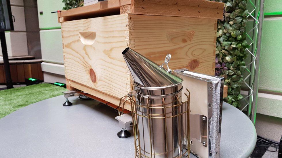 Salvan a las abejas 'conectándolas a la nube' - Foto de Carlos Tomasini