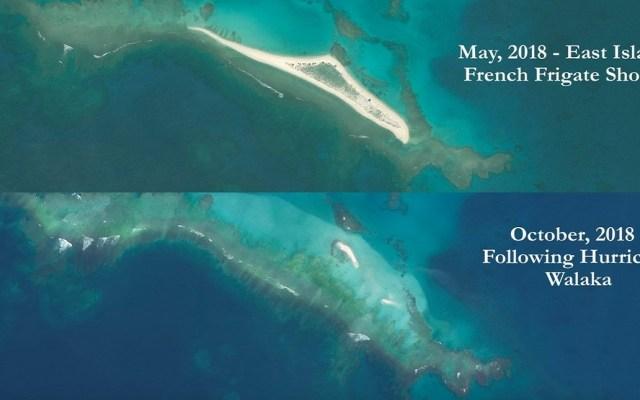 #Video Huracán Walaka elimina santuario de tortugas en Hawaii - Isla del Este antes y después del Huracán Walaka. Foto de @noaa