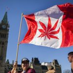 Así celebraron en Canadá legalización de la mariguana - mariguana