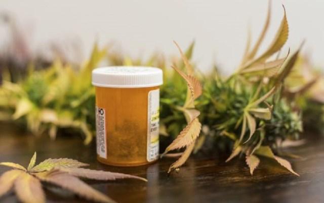 Industria de cannabis medicinal advierte atraso en otorgamiento de permisos - Mariguana medicinal. Foto de Internet