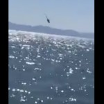 Cae helicóptero de la Marina en el Golfo de California; todos los tripulantes fueron rescatados