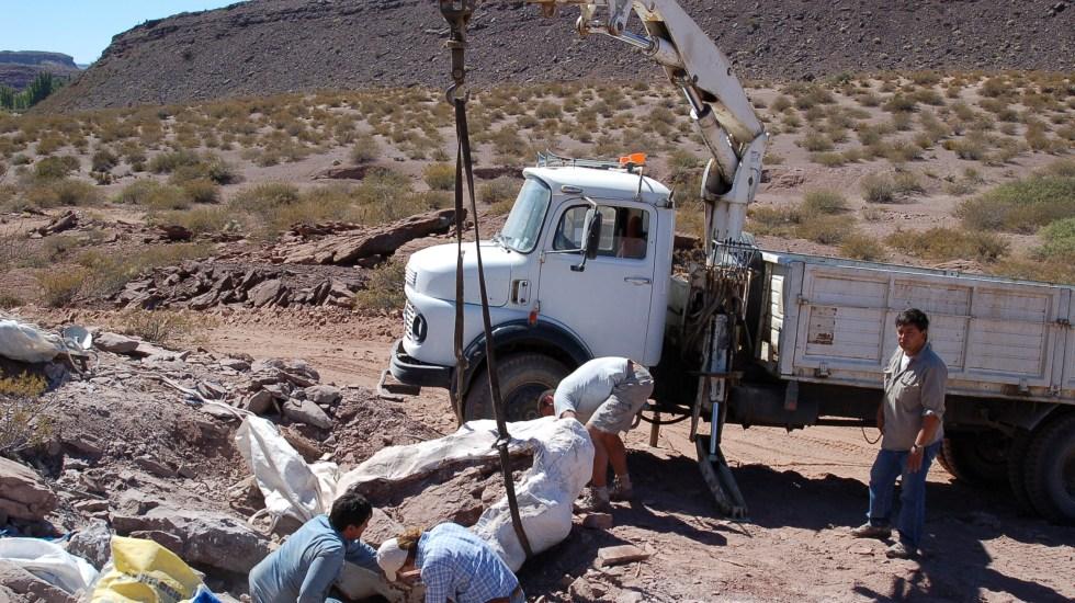 Encuentran restos de una nueva especie de dinosaurio en Argentina - Foto de AFP