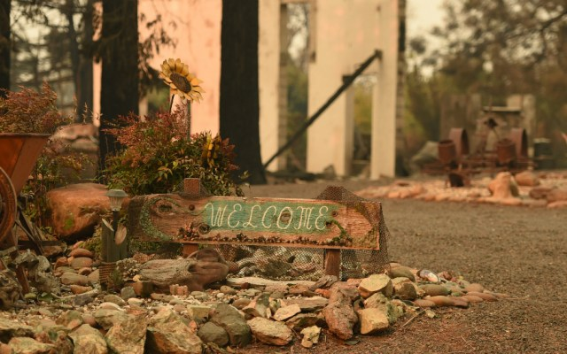 Con 42 muertos, incendio forestal de California es el más mortal en la historia del estado - Foto de AFP