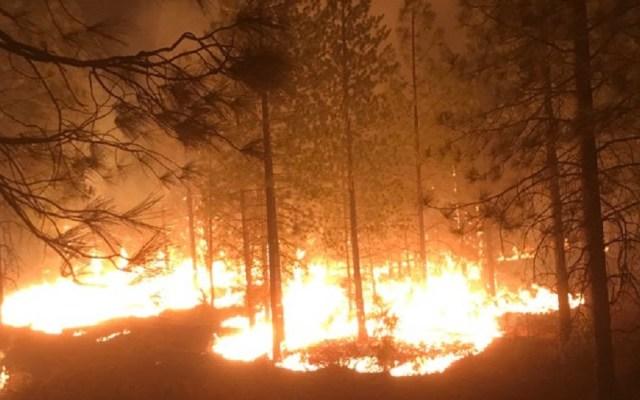 Trump corta ayuda a California para incendios - Camp Fire al norte de California. Foto de @CALFIRE_ButteCo