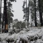 Recomendaciones para el ascenso al Nevado de Toluca