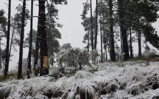 Una intensa nevada se presentó en la zona del Nevado de Toluca