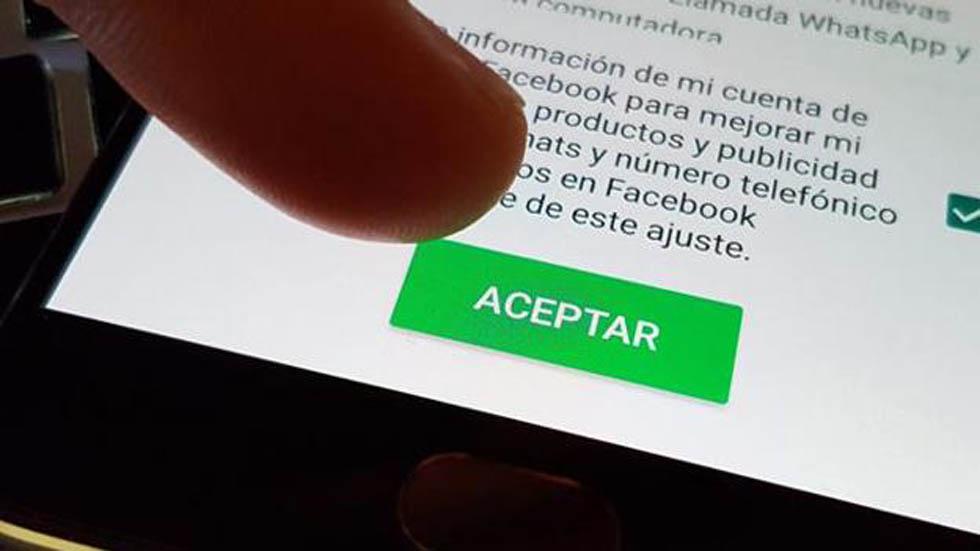 """Lo que esconden las """"letras chiquitas"""" al unirse a WhatsApp. Noticias en tiempo real"""