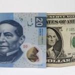 Dólar abre hasta en 20.50 pesos en casas de cambio - Foto de internet