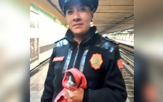 Policías rescatan a gato en vías del Metro Iztapalapa - Policía rescata gato en Metro Iztapalapa. Foto de @MetroCDMX
