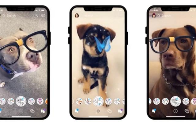 #Video Snapchat lanza filtros para perros - Filtros para perros en Snapchat. Captura de pantalla