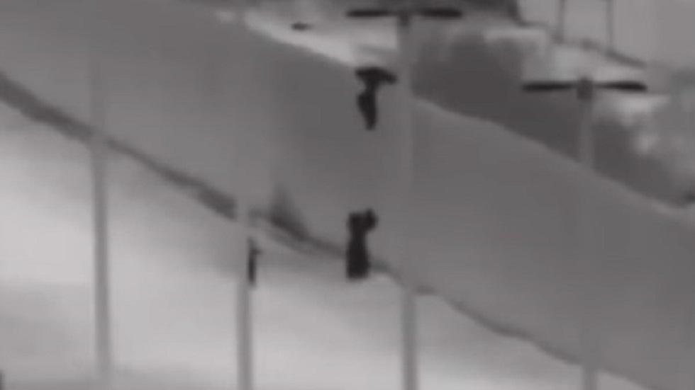 Momento en que mexicano arroja a menor a sus padres desde muro fronterizo. Captura de pantalla