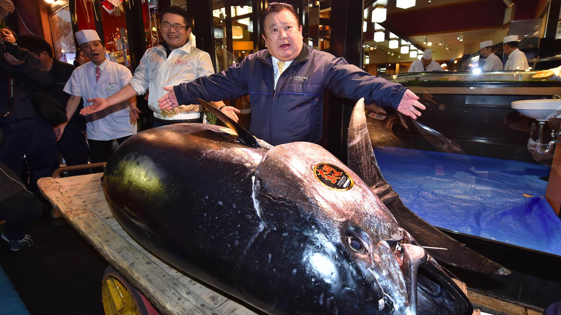 Subastado en Japón un atún por 3 millones