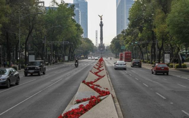 Ciudad de México podría tener City Manager a favor del medio ambiente - Foto de Notimex