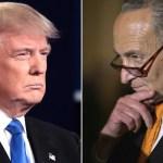 Es divertido ver a Schumer arrastrándose: Trump - trump schumer