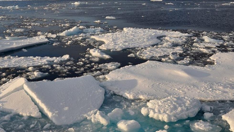 Hielo marino en el Ártico. Foto de Patrick Kelley