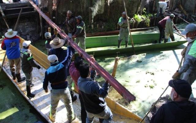Liberan a la navegación Canal Cruztitla en Xochimilco - Labores en canal de Xochimilco. Foto de @XochimilcoAlcaldiaOficial