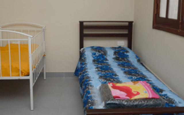 Refugios para mujeres maltratadas se mantienen: AMLO - Foto de Sem México