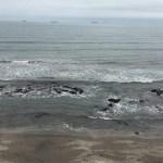 Mar retrocede en playas de Veracruz - Foto de XEU