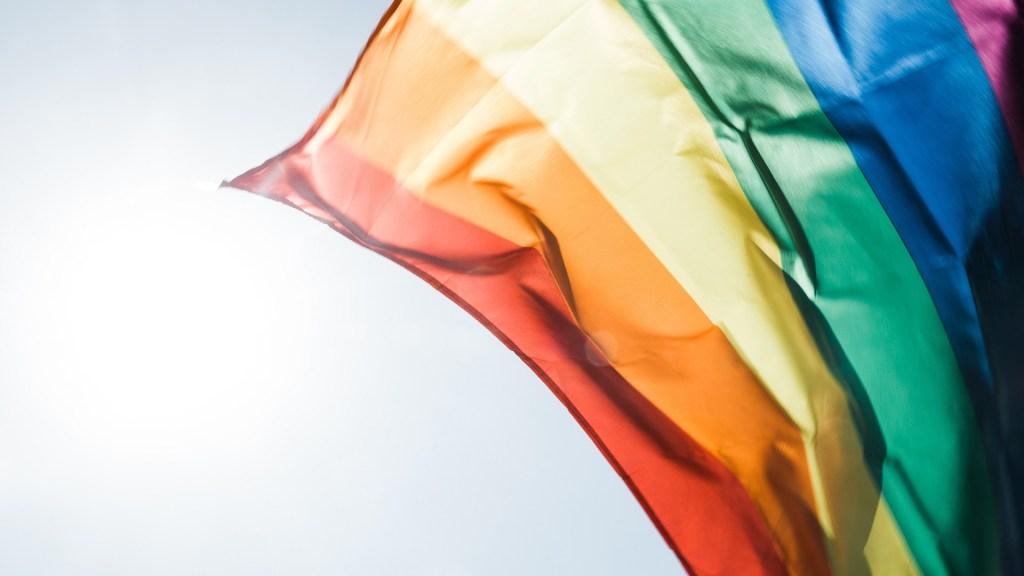 Sánchez Cordero llama a redoblar esfuerzos para erradicar la discriminación - Bandera del movimiento LGBTTTI. Foto de Peter Hershey / Unsplash