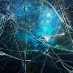 Cerebro sigue generandonuevas neuronashasta los90 años: estudio - Foto de PsicoActiva