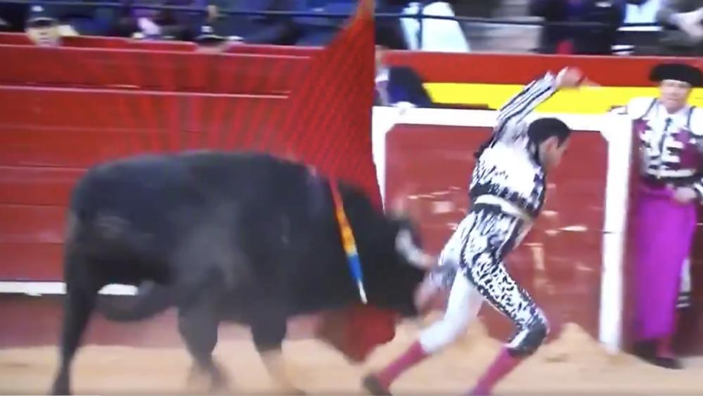 Espectacular cogida a Enrique Ponce en Valencia