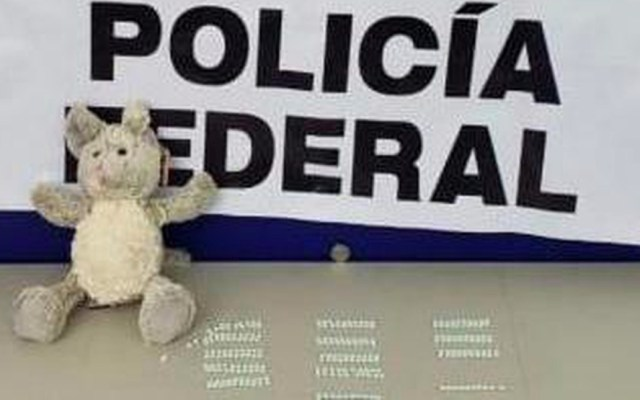 Decomisan 270 pastillas de fentalino escondidas en un oso de peluche - Foto de Policía Federal