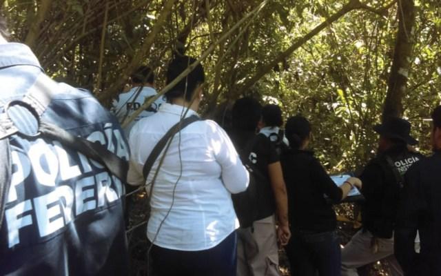 Encuentran 15 cuerpos en fosas clandestinas en Veracruz - Foto de Quadratín