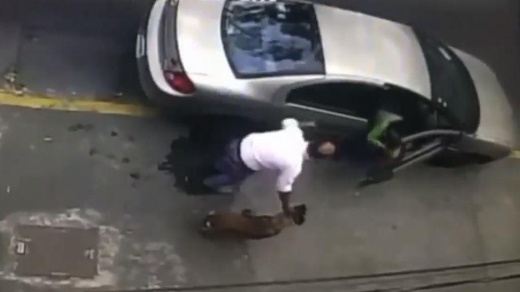 #Video Pareja 'roba' a Pastor Belga en Iztapalapa - Supuesto robo de Pastor Belga. Captura de pantalla