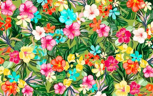 #RetoViral Encuentre la lechuga entre las flores tropicales