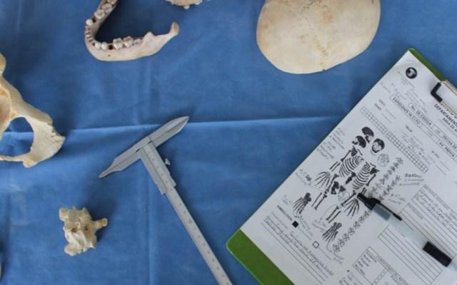 Incifo identifica 700 cadáveres en colaboración con el INE - Identificación de cadáveres. Foto de Incifo