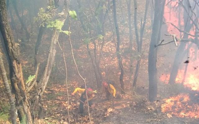 Otro incendio en el Bosque de la Primavera en Jalisco - Foto de @SemadetJal