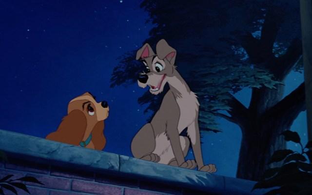 """Las primeras imágenes del live action de """"La dama y el vagabundo"""" - La dama y el vagabundo se estrenó en 1995. Foto de Oh My Disney"""