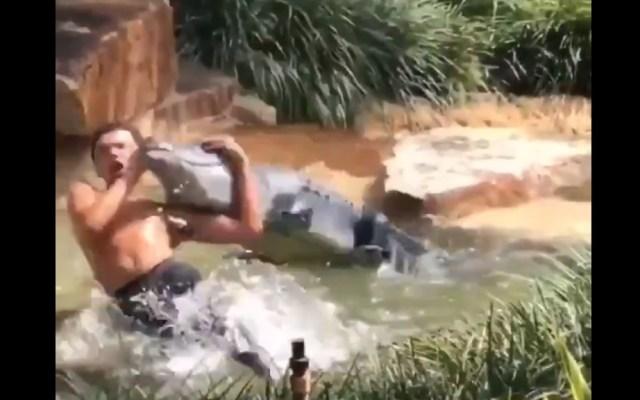 """#Video Detienen a joven por hacerle un """"RKO"""" a un cocodrilo falso - Captura de pantalla"""