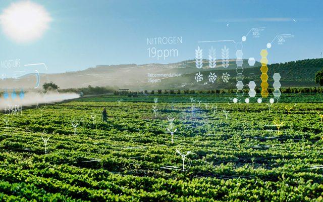 Se pueden producir alimentos más nutritivos y sustentables aprovechando la tecnología - Foto de Microsoft.